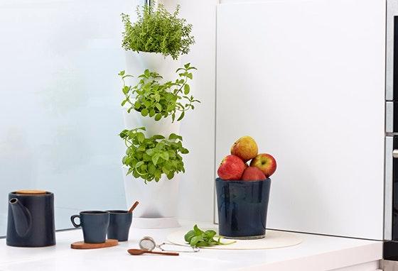 agrikolage-jardins-1_destaque