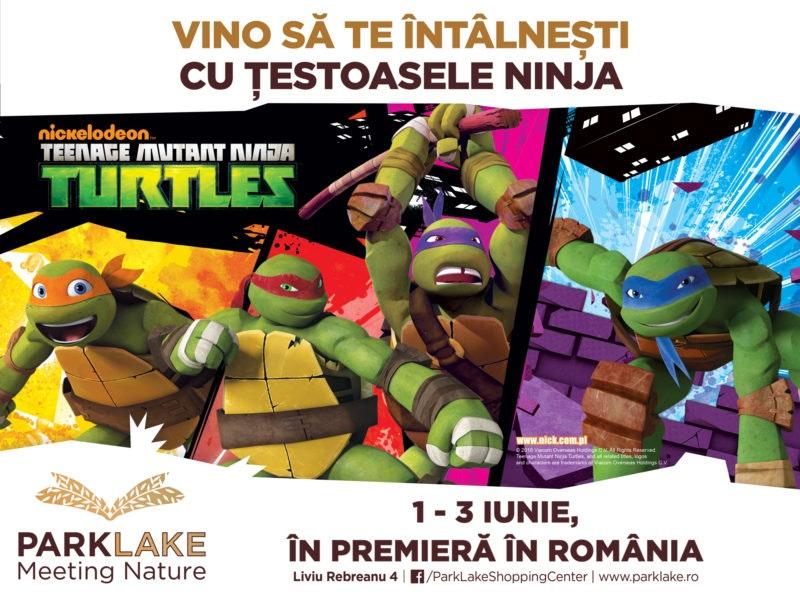 ParkLake_1-iunie_Turtles-Ninja-v3[1]