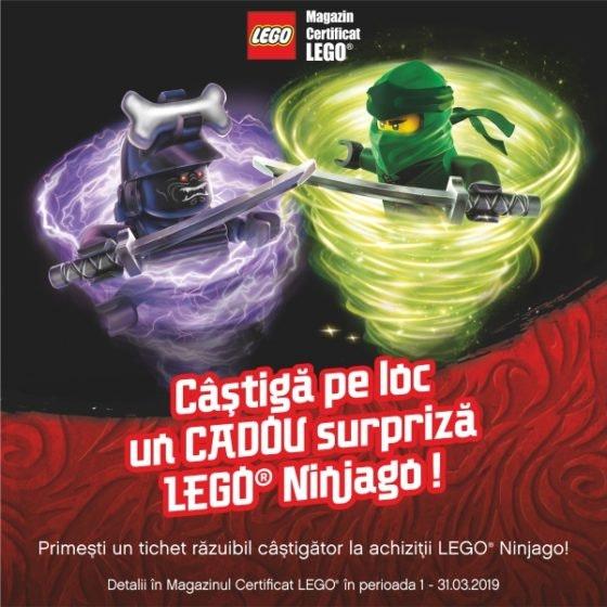 LEGO Brick 600x600px PKL NGO