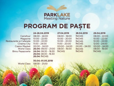 ParkLake_program_paste2019_Art web_730x529px