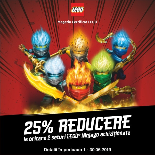 LEGO Brick NGO 600x600px PKL
