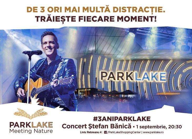 Articole_website_Concert_Banica_730x529px