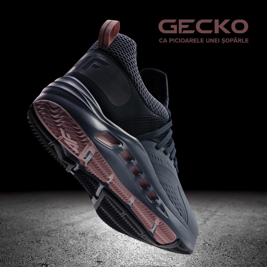 GECKO_1080x1080_RO