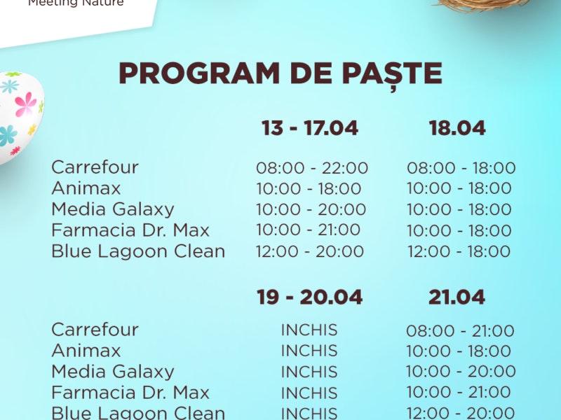 Program_Pasti_modificat