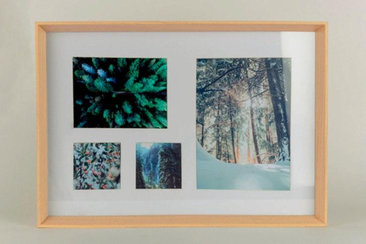 regalos de última hora marco de fotos de Natura