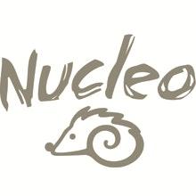 Nucleo_riccioOK