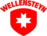 Wellensteyn-Logo RZ